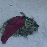 Голая женщина в Ульяновске выпала из окна