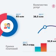 Число пользователей портала Госуслуг в 2018 году возросло на 30%