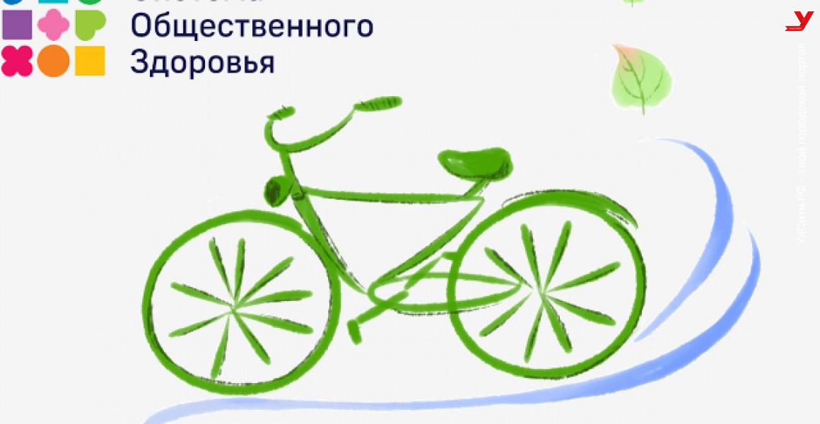 Ульяновцев приглашают к участию в фотоконкурсе «Велосипед лучше сигарет»