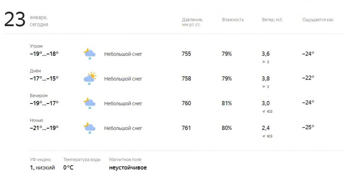 Погода 28 января 2019. Школьники Ульяновска учатся в штатном режиме