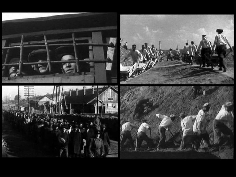 Музей истории ГУЛАГа представит во Дворце книги мастер-класс по поиску информации о репрессированных