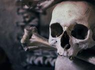 В Ульяновской области грибник нашел человеческие останки