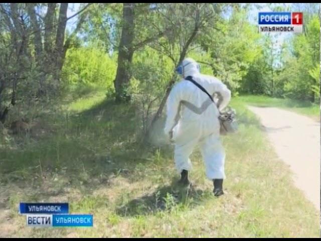 Новости Ульяновска: Экологический парк «Черное озеро» обработали от комаров, клещей и мух официальны