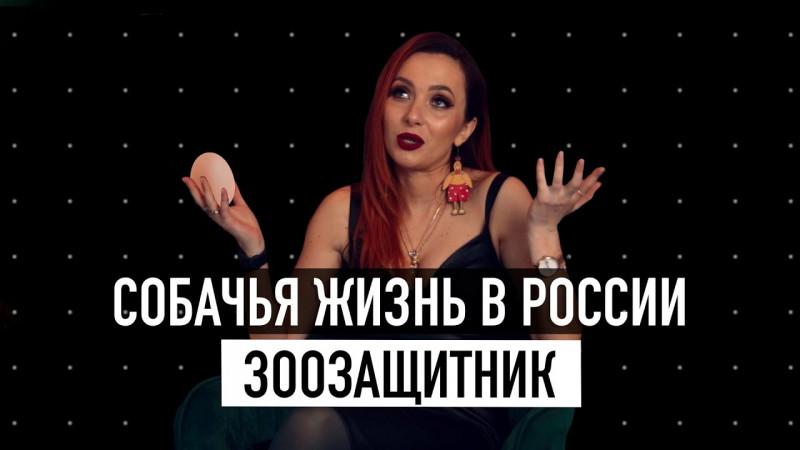 20 ВАЖНЫХ вопросов ЗООЗАЩИТНИКУ! / Татьяна Вельсвейс / ГОГОЛЪ