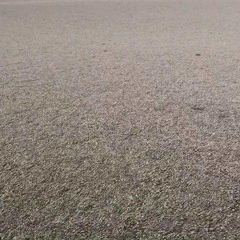 К берегам Австралии плывет гигантская пемза (видео)