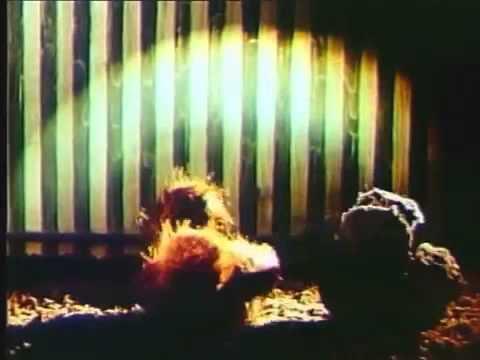 Смотреть мультфильм Приключения Жирафки 1973